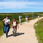 Výlet kprameni Labe pěšky ze Špindlerova Mlýna